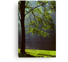 Ode to Life Canvas Print