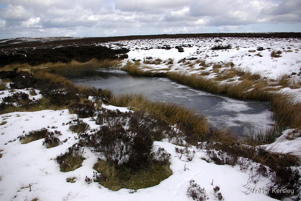 The Moors in Winter by Trevor Kersley