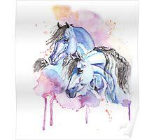 Blue Arabians Poster