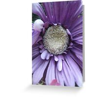 faux purple Greeting Card