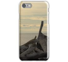 South Beach, San Juan Islands iPhone Case/Skin