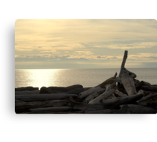South Beach, San Juan Islands Canvas Print