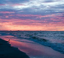Daybreak at Sanibel Island by Bonnie T.  Barry