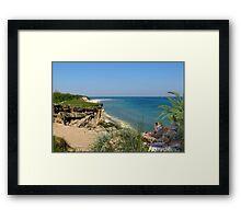 958B-Tropical Observers Framed Print