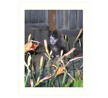 Hunter Cat Art Print