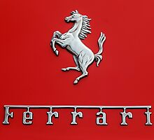Prancing Horse by dlhedberg