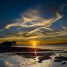 The Beach by Steven  Siow