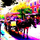 HORSE & BUGGY TOURS ( Old Town Alexandria, Virginia) by KEITH  R. WILLIAMS