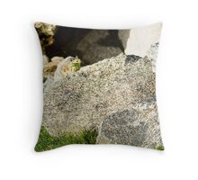 Pika-Gram Throw Pillow