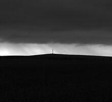 pylon by justinGC