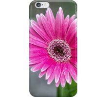 Fresh iPhone Case/Skin