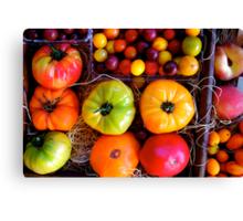 Season Harvest Canvas Print