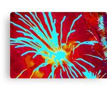 Fiery love Canvas Print