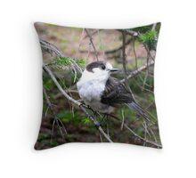 Gray Jay.... Olympic National Park, Washington Throw Pillow