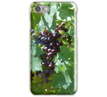 Vineyard grapes iPhone Case/Skin