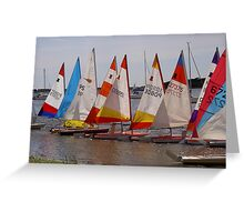 Colourful sails Greeting Card
