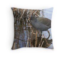 swamp hen Throw Pillow