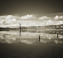 Past Reflections by David Haviland