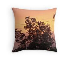Colouful Banksia Sunset Throw Pillow