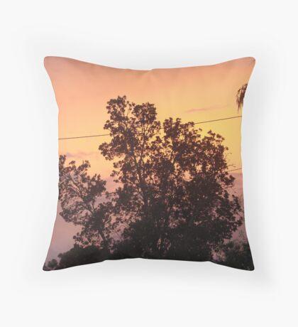 Colouful Banksia Sunset Throw Pillow