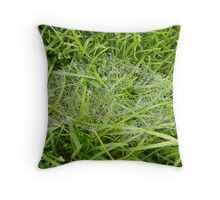 Dewy Web Throw Pillow