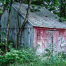 Little Red Barn by Rebecca Bryson