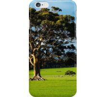 Ancient Limbs iPhone Case/Skin