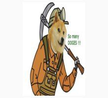 Doge universal by heremenis