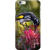 Afternoon Nectar Feast iPhone Case/Skin