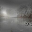 Mystic Fog by Igor Zenin