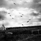 Little Bay Church In Storm by ltruskett