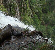 Queen Mary Falls by K8gsxr1000
