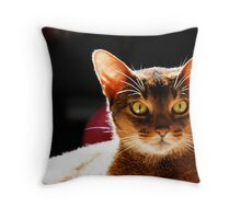 Bodhi in sunlight Throw Pillow