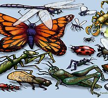 Bugs by Kevin Middleton