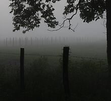 Into The Mist by Sherri Hamilton