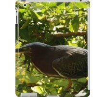 hunting bird - pájaro cazando iPad Case/Skin