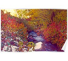 Stream in Autumn - 1  (Mill Creek Canyon, Utah)  Poster