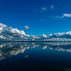 Bay of Bellingham by taylorswift