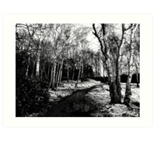 Snowy Woodland Art Print