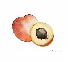 Peaches fruits painting watercolor art print by Joanna Szmerdt