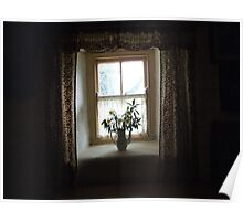 Dark cottage window Poster