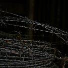 Dark wire by HeidiD