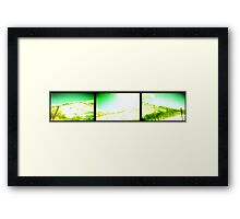 Snowy Mountain Montage Framed Print