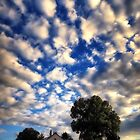 Blue Sky and White Cloud Day by KellyHeaton