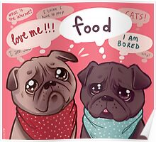Confused pugs Poster