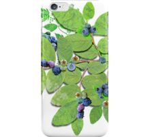 Blueberries from Nova Scotia iPhone Case/Skin