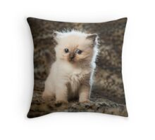 All in the eyes Throw Pillow
