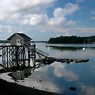 Lobsterman's shack, Damarascotta, Maine by fauselr