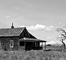 Lonely house by Jeffrey  Sinnock