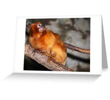 MaMa Tamarin Greeting Card